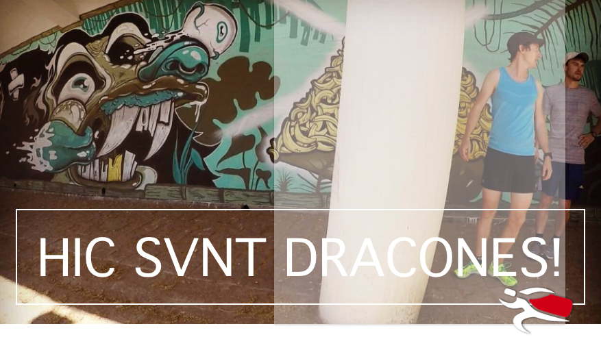 Here be dragons - why are there so many dragons in Porto?